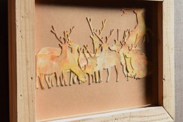 deer -野生の棲む森-