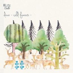 deer-野生の棲む森-